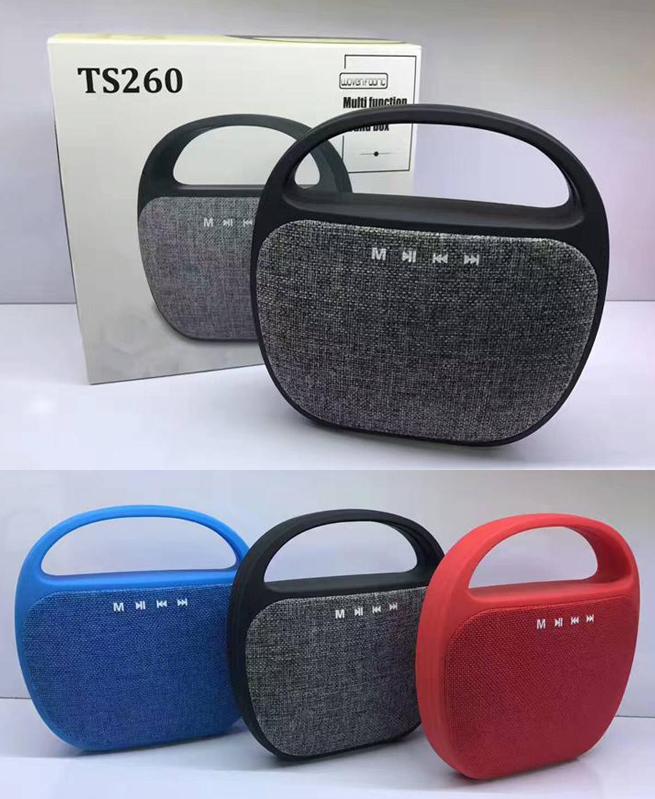 Mini Haut Parleur Ts260 Portable avec poignée