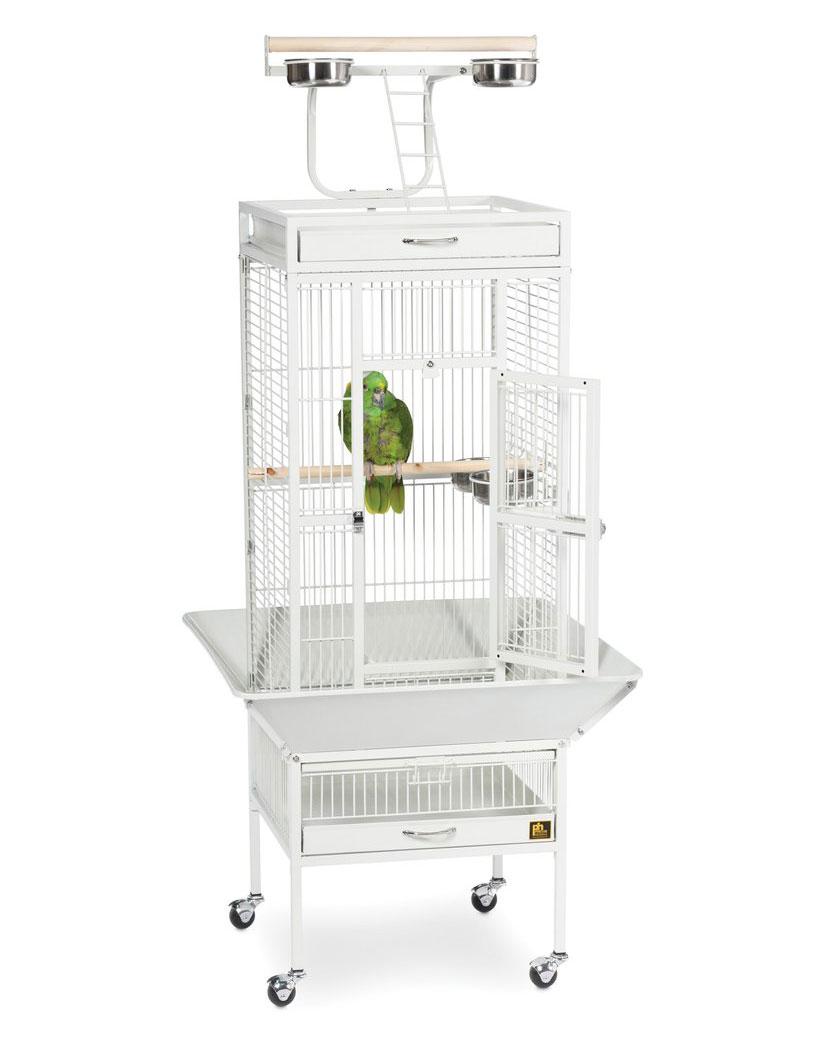 Cage galvanisée anti-répulsif pour perroquet et petit oiseaux de compagnie