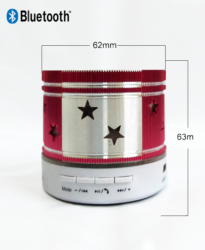 Mini Haut-parleur Bluetooth avec Microphone