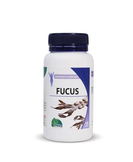Mgd nature Fucus - 120 gélules