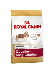 Croquettes Royal Canin Cavalier King Charles Adulte 1,5kg