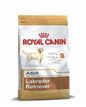 Croquettes Royal Canin Labrador Retriever Adulte 12kg