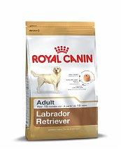 Croquettes Royal Canin Labrador Retriever Adulte 12kg