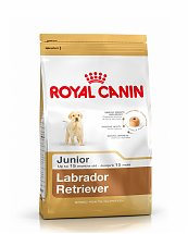 Croquettes Royal Canin Labrador Retriever Junior 12kg