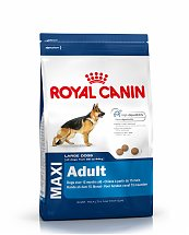 Croquettes Royal Canin Maxi Adulte 4kg