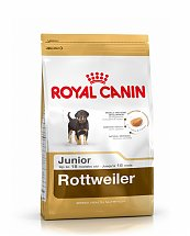 Croquettes Royal Rottweiler Junior 3kg