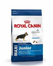 Croquettes Royal Canin Maxi Junior 4kg