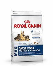Croquettes Royal Canin Maxi Starter 4kg