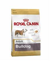 bulldog-anglais-adult-royalcanin-beloccasion-maroc-animalerie-maroc-cablanca-croquette.jpg