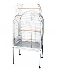 1611695117-cage-calopsitte-a-donner-cage-calopsitte-jardiland-dimension-cage-calopsitte-cage-calopsitte-tom-co-cage-pour-calopsitte-maroc-cage-pour-calopsitte-pas-cher-voliere-calopsitte-exterieur-cage-calopsitte-truffaut-maroc.jpg