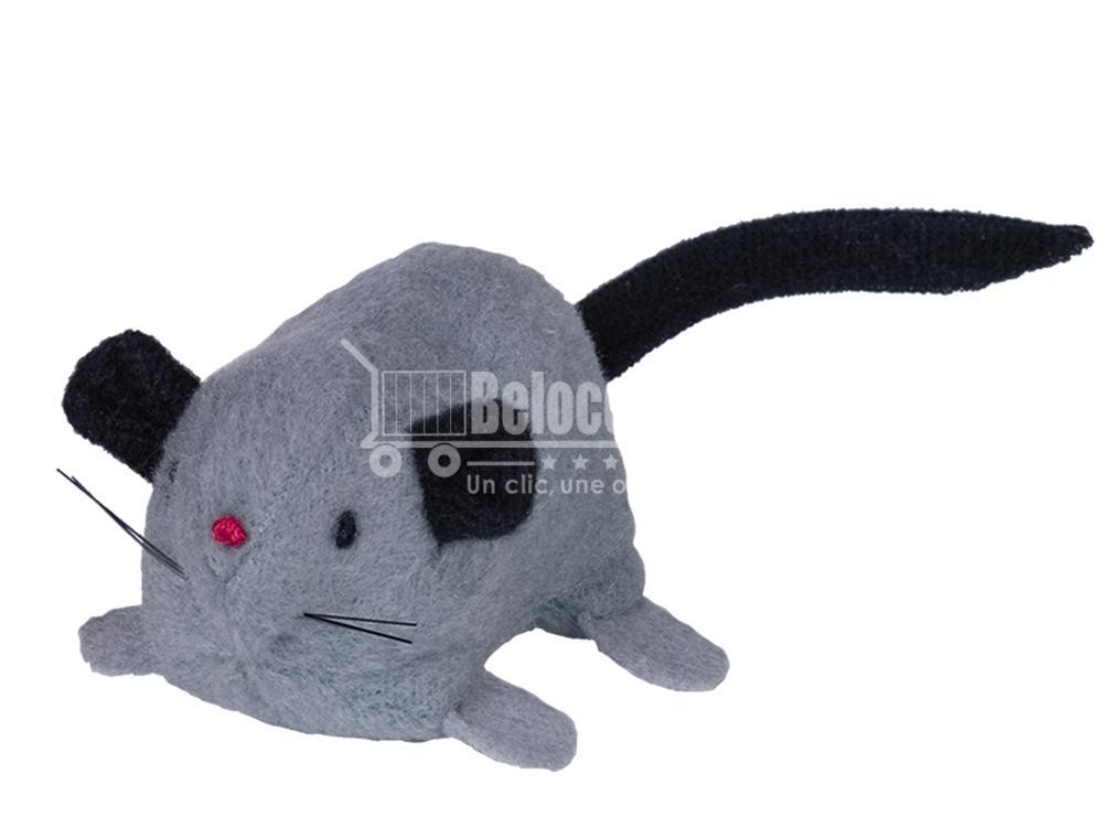 doudou pour chat peluche pour chaton jouet pour chat jouet pour souris jouet pour chat souris télécommandée souris pour chat qui bouge toute seule beloccasion animalerie en ligne maroc