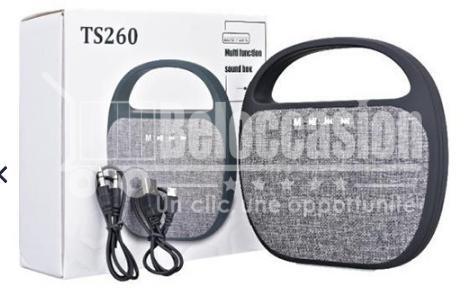 Mini Haut Parleur Ts260 Portable avec poignée - Beloccasion maroc